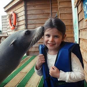 Blue Reef Aquarium in Tynemouth