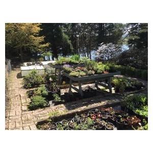 Dr Neil's Garden