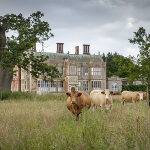 Felbrigg Hall, Gardens and Estate