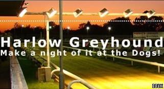 harlow stadium greyhound racing harlow essex. Black Bedroom Furniture Sets. Home Design Ideas