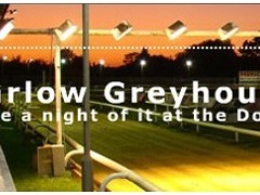 Harlow Stadium Greyhound Racing