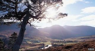 Highland Adventure Safaris