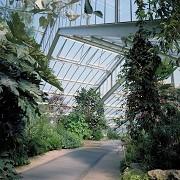 Kew Gardens - Princess of Wales Conservatory © RBG Kew