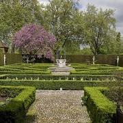 Kew Gardens - Queens Garden © RBG Kew