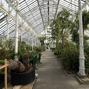 Kew Gardens - Temperate House © RBG Kew