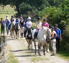 Ladybooth Equestrian Centre
