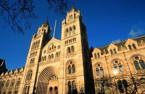 Natural History Museum - © Trustees of the Natural History Museum