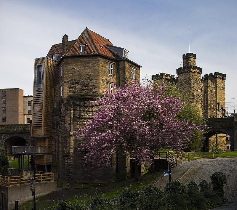 Hotels Near Colchester Castle