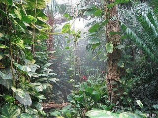 Roundhay Park and Tropical World