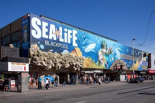 SEA LIFE Blackpool - © David A.Ingham via http://flic.kr/p/9NTruQ