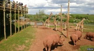 South Lakes Wild Animal Park