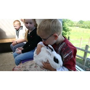The Ark Open Farm