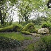 The Lost Gardens of Heligan - © Heligan Gardens Ltd