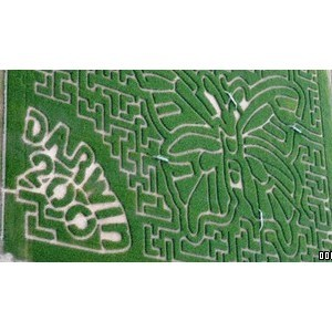 The Milton Maize Maze