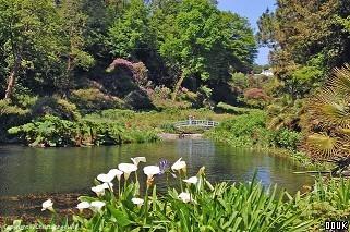 Trebah Gardens