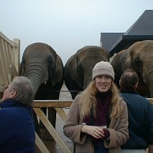 Colchester Zoo - This is da missus in front of da phants. by fuzzyfish